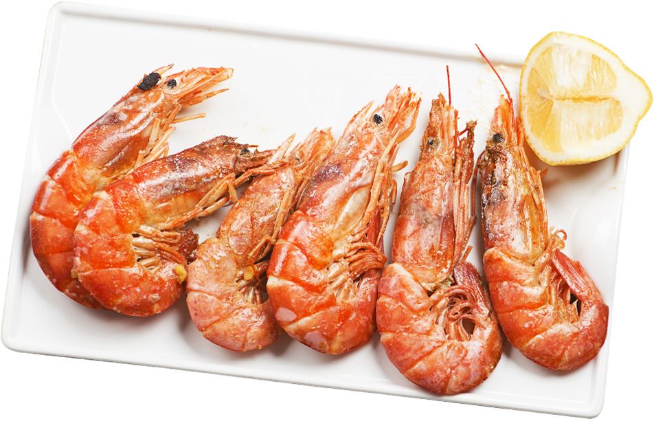 H & N Group | Wholesale Seafood