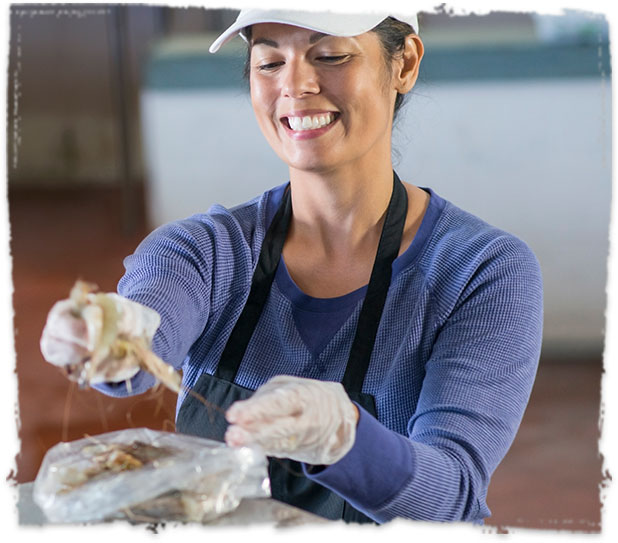 Wholesale Seafood Handler